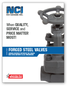 Forged Carbon & Stainless Steel Valves Catalogue